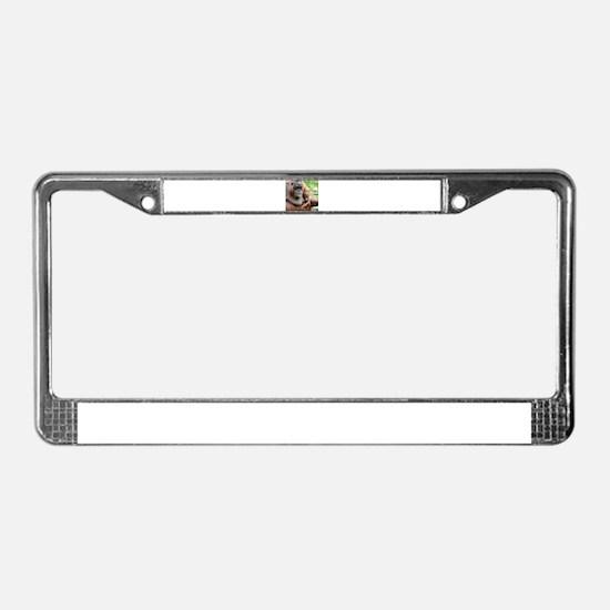 OrangUtan20151006 License Plate Frame