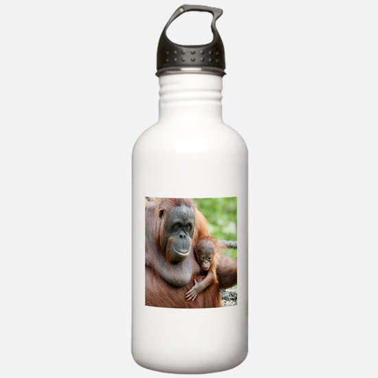 OrangUtan20151006 Water Bottle