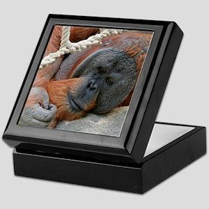 OrangUtan20151007 Keepsake Box
