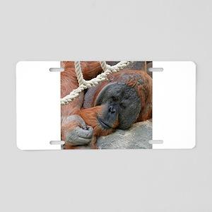 OrangUtan20151007 Aluminum License Plate