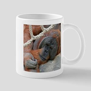 OrangUtan20151007 Mugs