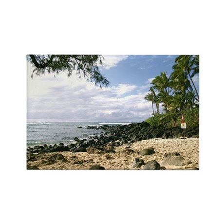 Turtle Beach, Hawaii Rectangle Magnet (100 pack)