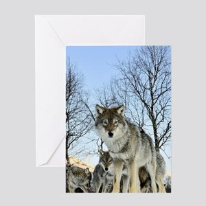Pack Of Wolves During Winter Greeting Cards