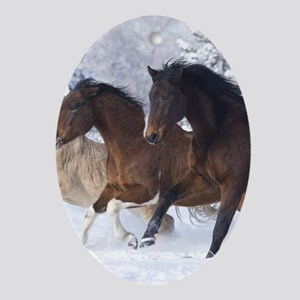 Horses Running In The Snow Oval Ornament