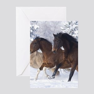 Horses Running In The Snow Greeting Cards