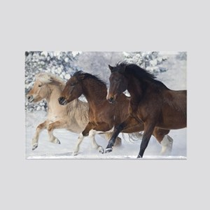Horses Running In The Snow Magnets