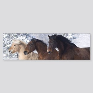 Horses Running In The Snow Bumper Sticker