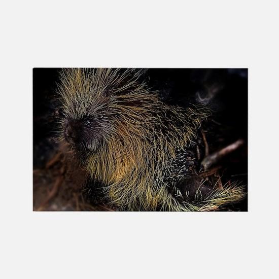 Porcupine! Rectangle Magnet