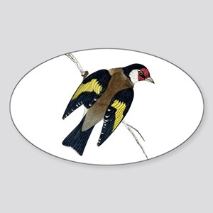 Goldfinch Oval Sticker