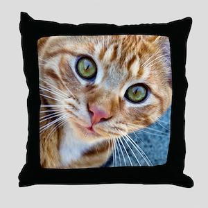 Crazy Kitty Throw Pillow