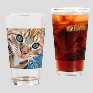 Crazy Kitty Drinking Glass