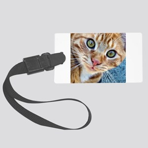 Crazy Kitty Luggage Tag