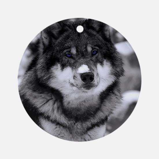 Grey Wolf In Snow Round Ornament