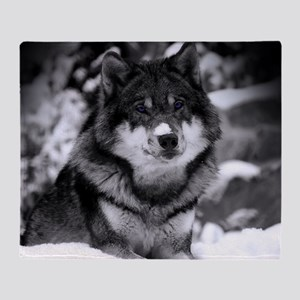 Grey Wolf In Snow Throw Blanket
