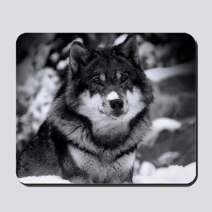 Grey Wolf In Snow Mousepad