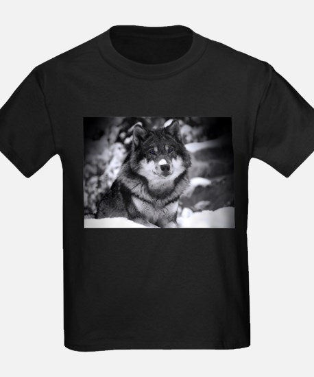 Grey Wolf In Snow T-Shirt