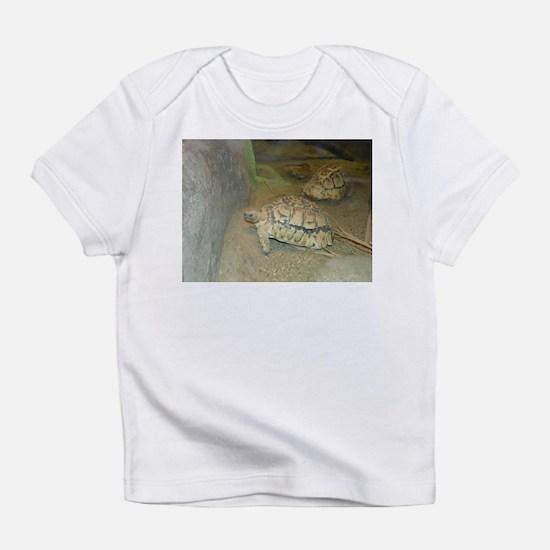 Turtles Infant T-Shirt