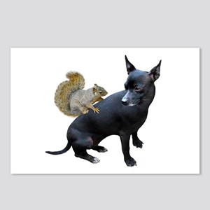 Squirrel on Dog Postcards (Package of 8)