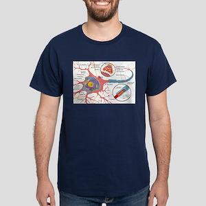 Neuron Cell Diagram T-Shirt