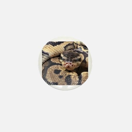 Unique Snake Mini Button