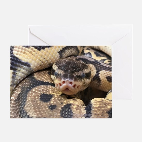 Funny Snake Greeting Card