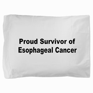 esophageal4 Pillow Sham