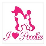 "Pink Poodles Square Car Magnet 3"" X 3"""