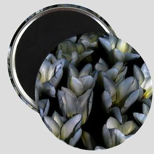 Gothic Tulips Magnet
