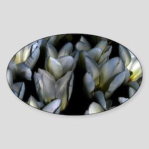 Gothic Tulip Sticker