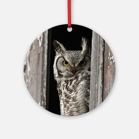 OWL Round Ornament