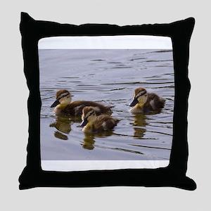 mallard ducklings, Anas platyrhynchos Throw Pillow