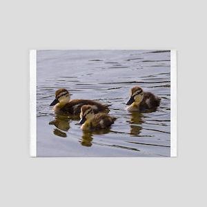 mallard ducklings, Anas platyrhynchos 5'x7'Area Ru