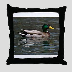 male mallard swimming Throw Pillow