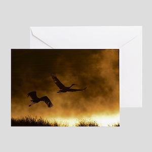 Sandhill crane greeting cards cafepress rising cranes greeting card m4hsunfo