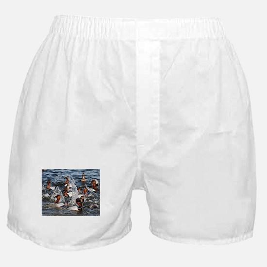 Canvas backs Boxer Shorts