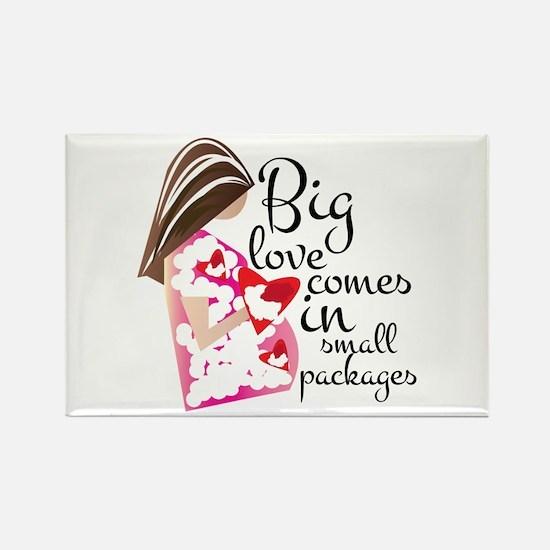 Big Love Magnets
