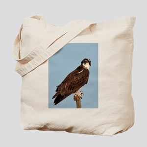 Osprey on a windy day Tote Bag