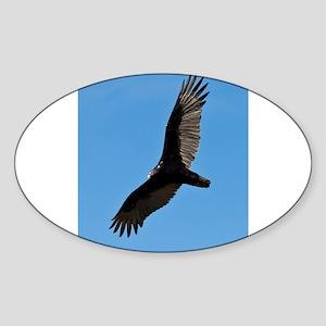 Turkey vulture Sticker
