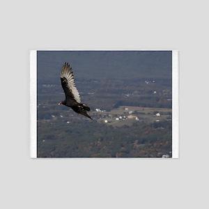 Turkey Vulture over Shenandoah National Park 5'x7'