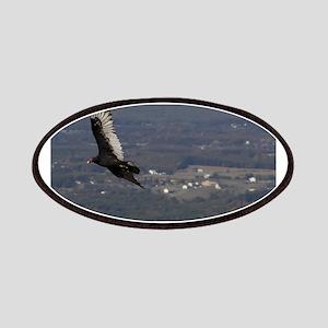 Turkey Vulture over Shenandoah National Park Patch