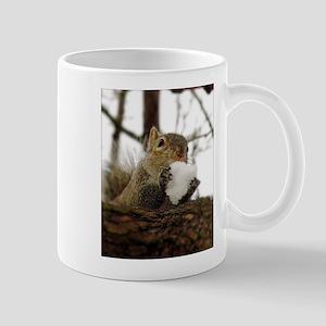 Squirrel Snowcone Mugs