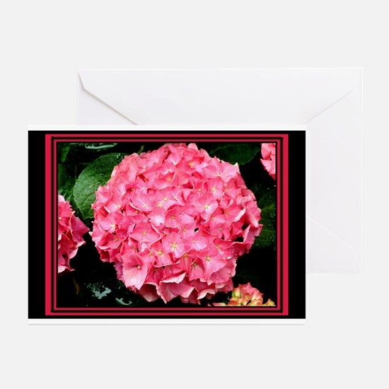 Garden Showing Greeting Cards (Pk of 10)