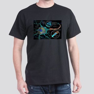 Neuron Cell Diagram T-Shirt
