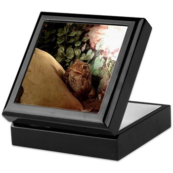Patches the Toad Wood Framed Keepsake Box