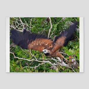 black collared hawk taking flight 5'x7'Area Rug