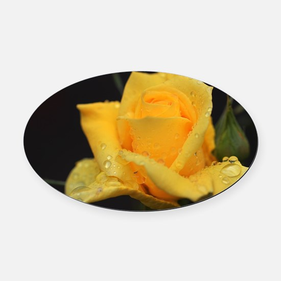 Yellow Roses Oval Car Magnet