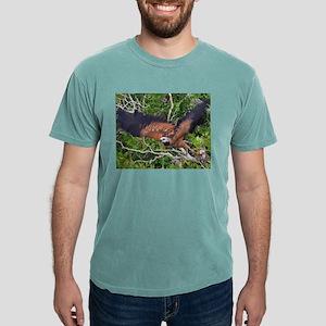 black collared hawk taking flight T-Shirt