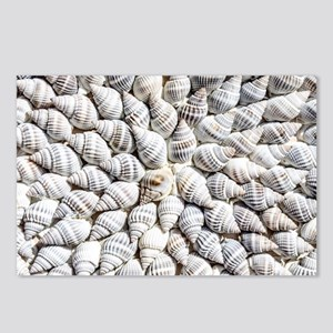 White seashells Postcards (Package of 8)