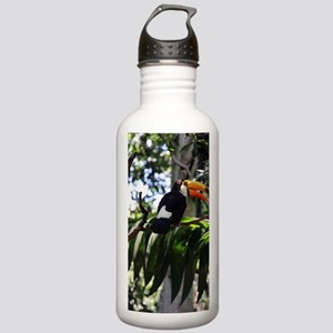 Toucan Stainless Water Bottle 1.0L