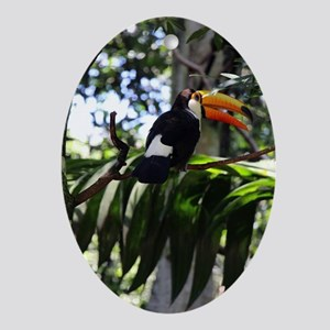 Toucan Oval Ornament
